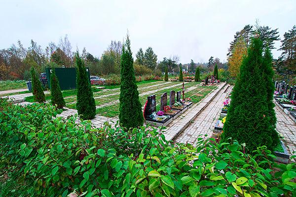 Одиночные участки Горского кладбища