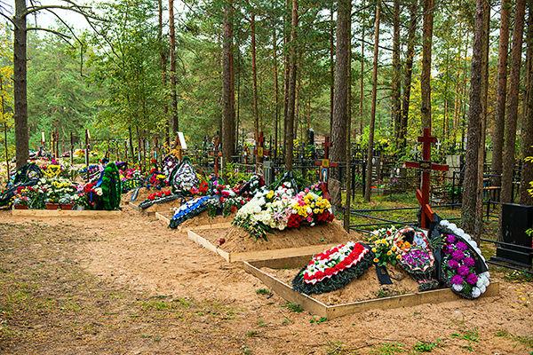 Одиночные участки Сестрорецкого кладбища